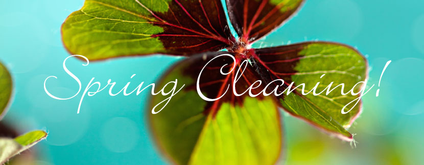 Cleaning tips from Lowder New Homes